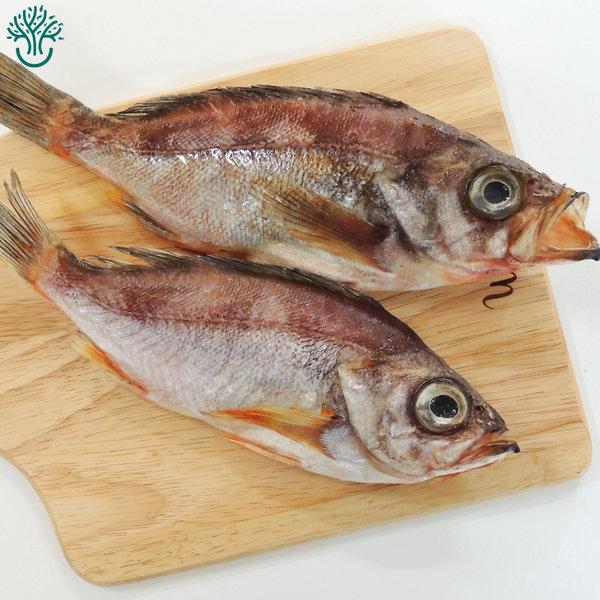 삼천포 용궁수산시장 반건조 생선 볼락 한꾸러미