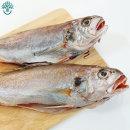삼천포 용궁수산시장 반건조 생선 조기(두) 한꾸러미