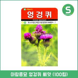 엉겅퀴씨앗 100립 꽃씨앗 약초 산약초 엉겅퀴 민속씨