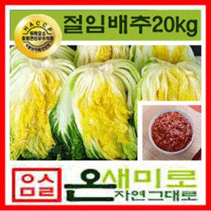 절임배추20kg+김장김치양념8kg(100%국산)온새미로김치