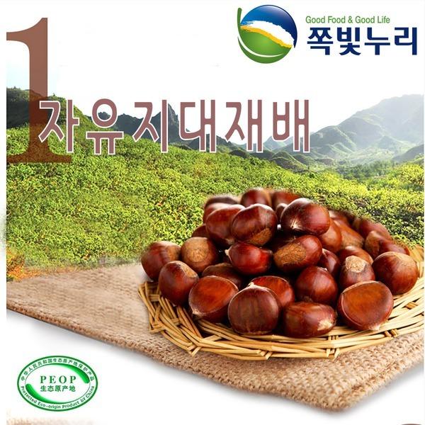 19년산 약단밤 3kg/생율/햇밤