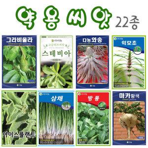 약용씨앗3종/아이스플랜트/백하수오/적하수오 ( )