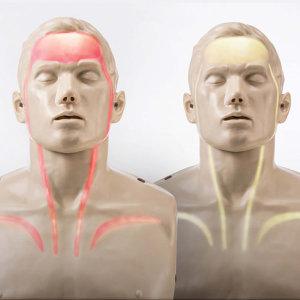 심폐소생술마네킨-CPR 인체모형(애니) 혈행표시제품