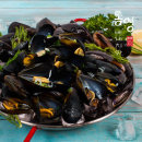 통영 베네치아수산 홍합 5kg 특가 당일조업 발송