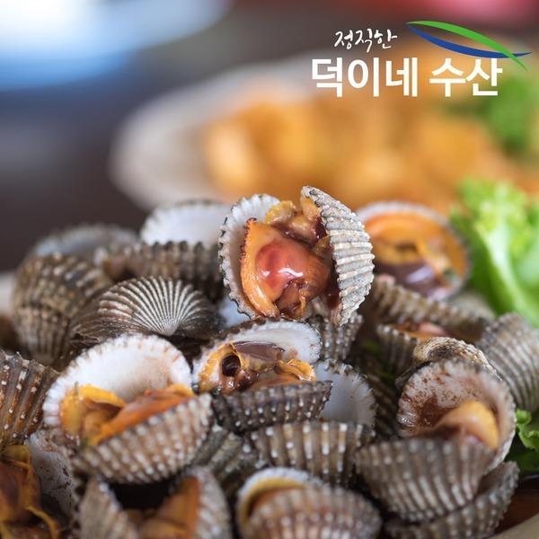 100% 남해안 국내산 새 꼬막 2K 1일특가판매