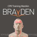 혈행표시 교육용 CPR 심폐소생술마네킹 브래이든