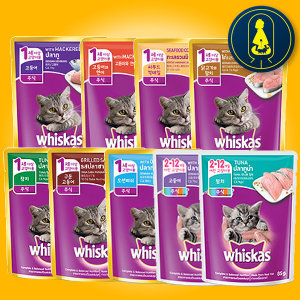 위스카스 파우치 85g 24개 쉬바 고양이 간식 캔 습식