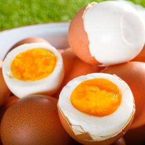 무항생제 계란으로 만든 아산맑은 온천 반숙란 30구