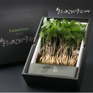 문영철님의 장성 새싹삼 선물세트(50뿌리) 쿠폰가24960