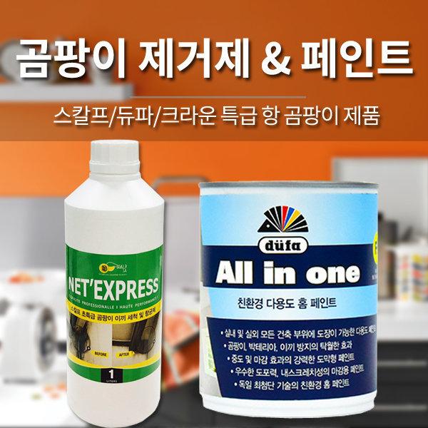 곰팡이 제거제 및 방지페인트/스칼프 듀파 직수입정품