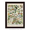 도레미그림 올댓프레임-식물 (Assorted Botanic-BB)