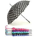 AB장우산땡땡이 당일출발 여성용 패션우산