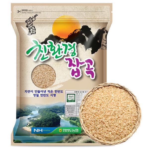 무농약 현미 1kg (2019년산)