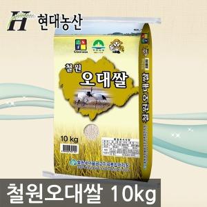 철원오대쌀 10kg / 쌀 백미