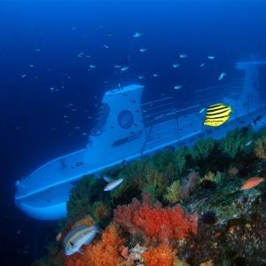 |제주|서귀포잠수함+혜택몰빵 |제주잠수함|제주도잠수함
