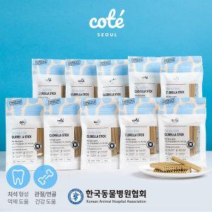 기능성 강아지 간식 치카껌 클로렐라 스틱 x 10팩