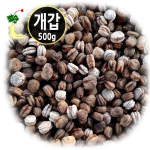 고려인삼 개갑 인삼씨앗 500g 산삼 장뇌삼재배용 종자