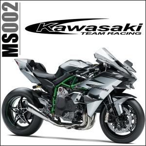 오토바이스티커/MS002/KAWASAKI/바이크꾸미기스티커
