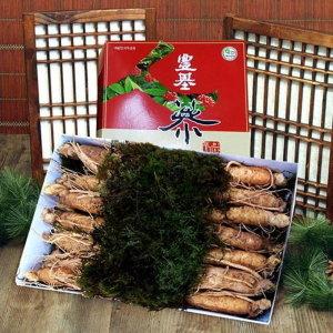 풍기인삼  5년근 수삼 1채 500g (15~17뿌리)