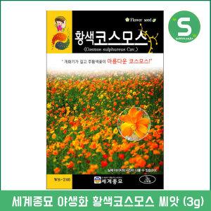 황색코스모스씨앗 3g 코스모스씨앗 꽃씨앗 꽃씨