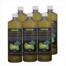 양배추와 브로콜리 유산균 발효원액 6병 세트