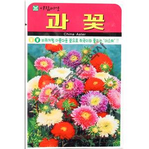과꽃/야생화/중앙종묘/꽃씨 과꽃