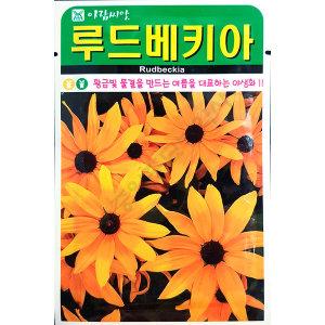 루드베키아/야생화/중앙종묘/꽃씨 루드베키아 1000립