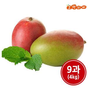 페루산 생 애플망고 9과 (4kg)