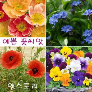 (예쁜 꽃씨앗)꽃양귀비/물망초/비올라/춘자국/허브