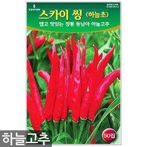 하늘고추 50립 - 고추씨 고추씨앗 씨앗 씨 고추 동남