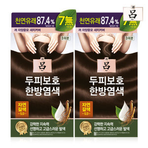 려 자양윤모 새치커버 5.0 자연갈색(20g3) x 2