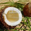 국내 FO 코코넛 프래그런스 오일 100ml