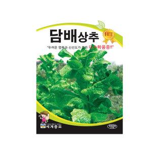 무료배송+다양한 상추씨앗 모음 세계종묘 담배상추