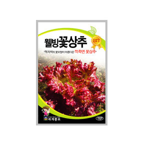 무배+다양한 상추씨앗 모음 세계종묘 웰빙꽃상추