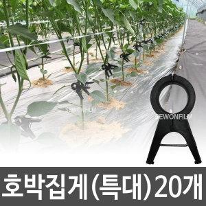 호박집게(특대) 20개