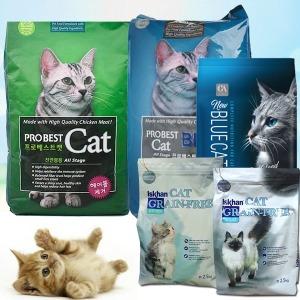 고양이사료/프로베스트캣/블루/이즈칸캣/뉴블루