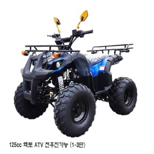 2019년 125cc ATV 엑토 /사륜바이크/4륜오토바이