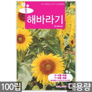 해바라기 씨앗 100립 / 해바라기씨앗 해바리기씨 꽃씨