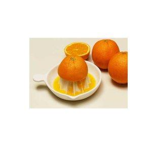 DDZ  일본 도자기 오렌지쥬서/스퀴저/오렌지 착즙기