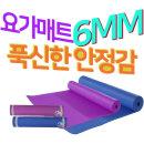 뉴스포츠 요가매트 6mm IW_PVC