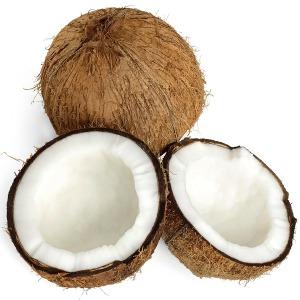 재미농산 베트남 코코넛 야자 20개