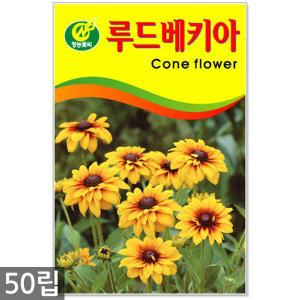 루드베키아 50립 - 꽃씨 꽃씨앗 루드베키아씨앗 씨 야