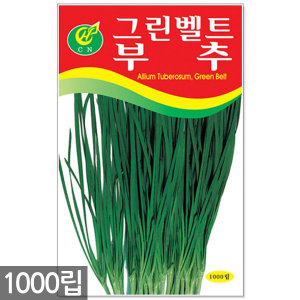 부추 씨앗 1000립 / 채소씨앗 상추씨앗 쌈채소 씨