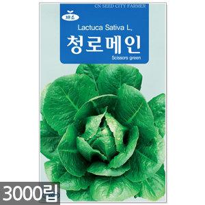 청로메인 씨앗 3000립 / 로메인씨앗 쌈채소씨 상추씨