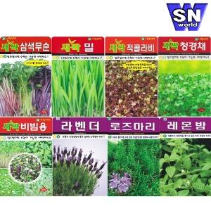 (8천무배) 새싹씨앗 꽃씨 씨앗 채소씨앗 허브 야생화