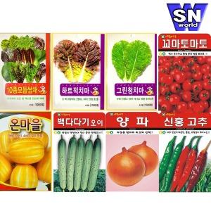 (8천무배) 씨앗 모음전 쌈채소 열매 특허 꽃씨 야생화
