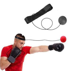 다이어트 권투 복싱 탭공 잽볼 글러브 동체시력운동