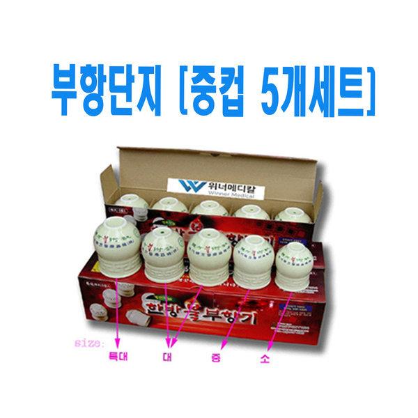 현대한방 불부항 단지 (중컵 5개세트) 부항컵