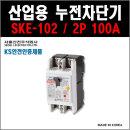 서울산전 산업용누전차단기 SKE-102 2P-100A