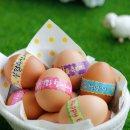 부활절 포장지 계란 달걀 비닐스티커 KJ-19 2종중랜덤